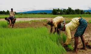 People development in Bangladesh, rich in resources, poor in know-how