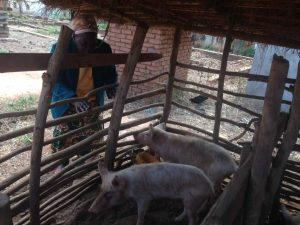 coaching had a huge impact on charcoal seller turned pig farmer